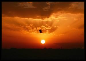 güneş batarken ufka yaklaştıkça git gide daha turuncu gözükmeye başlar